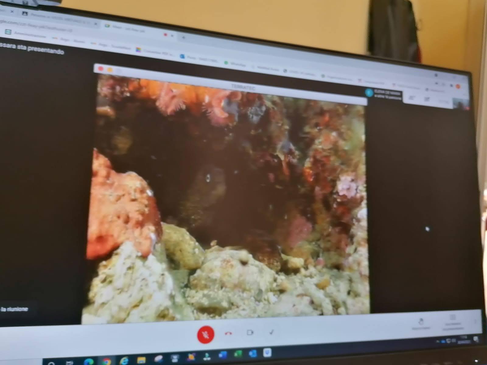 Il mare in classe